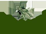 ΕΝΟΙΚΙΑΖΟΜΕΝΑ ΔΩΜΑΤΙΑ ΔΙΑΜΕΡΙΣΜΑΤΑ ΒΙΛΕΣ ΜΕ ΙΔΙΩΤΙΚΗ ΠΙΣΙΝΑ AGRILIDES VILLAS ΑΓΙΑ ΜΑΡΙΝΑ ΛΕΥΚΑΔΑ