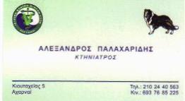 ΑΛΕΞΑΝΔΡΟΣ  ΠΑΛΑΧΑΡΙΔΗΣ